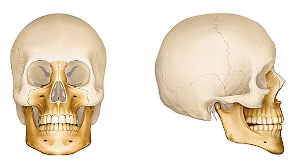 osteopathe machoire