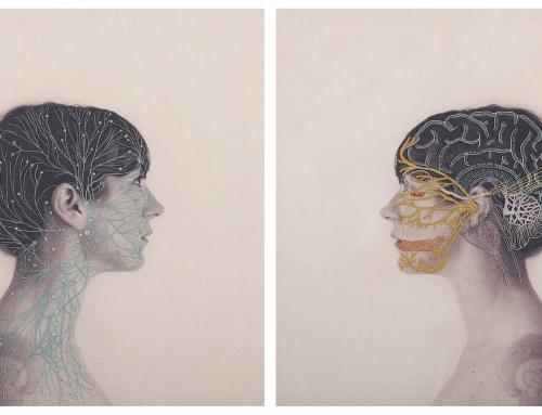 Quand la Neuro et l'Anatomie rencontrent l'Art